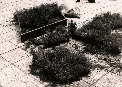 "Jana Želibská - Grass Taken from Place ""A"" Grows in Place ""B"" in a Designed Patern, 1981 Bratislava and surroundings b/w photography, 23 x 16 cm, Courtesy Gandy gallery"