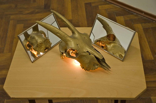"Jana Želibská - ""The different life of goat"" J.Z, , 1997 Small installation (little table, skull, light, mirrors) 70 x 50 x 38 cm Courtesy Gandy gallery"