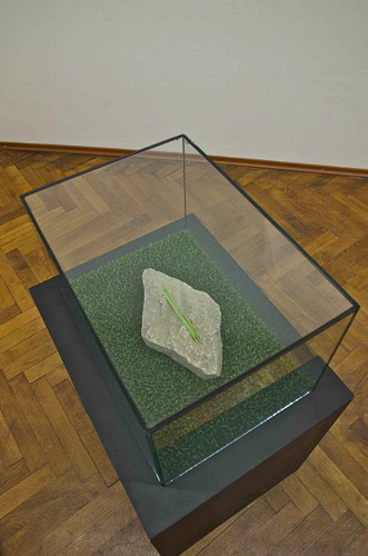 Jana Želibská - The Stone (stone, grass, wood, glass), 2014 mixed media, 50 x 50 x 35 cm Courtesy Gandy gallery