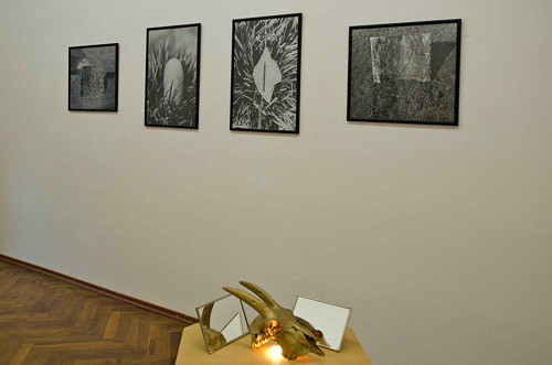 Jana Želibská - Exhibition view